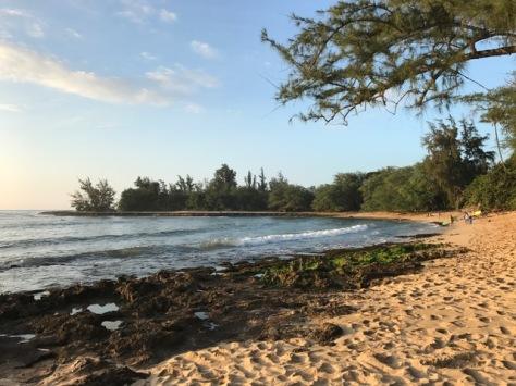 hawaii-beach-1