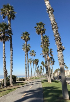 Image of beach bike path
