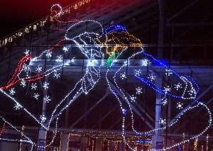 Image of the Speedway Christmas Lights