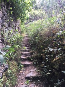 Image of Cinque Terre Hiking Trail