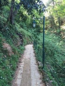 Image of trail to Portofino