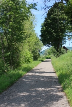 Image of the Donauradweg