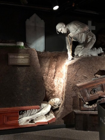 Image of body snatching exhibit at Glasnevin Cemetery