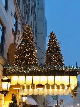 Image of decorated Christmas trees on an awning.