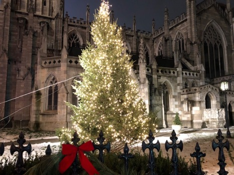 Image of a Christmas tree in front of Grace Church.