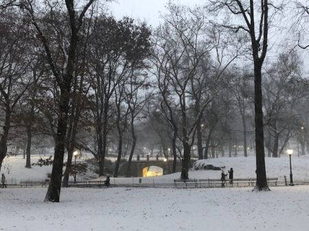 Image of snow in Central Park.
