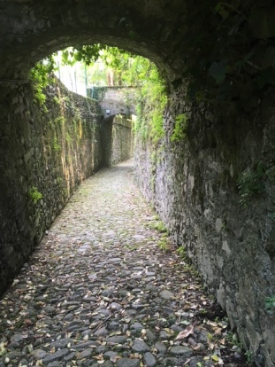 Image of the Greenway Path