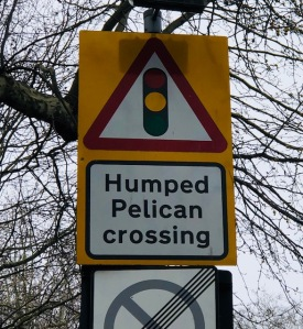 "Image of a road sign that says, ""Humped Pelican crossing."""