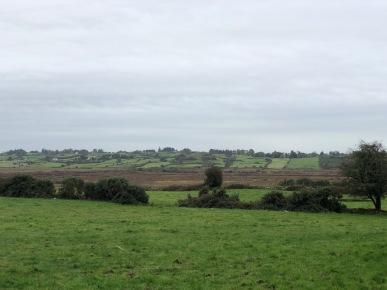Image of fields in Ireland